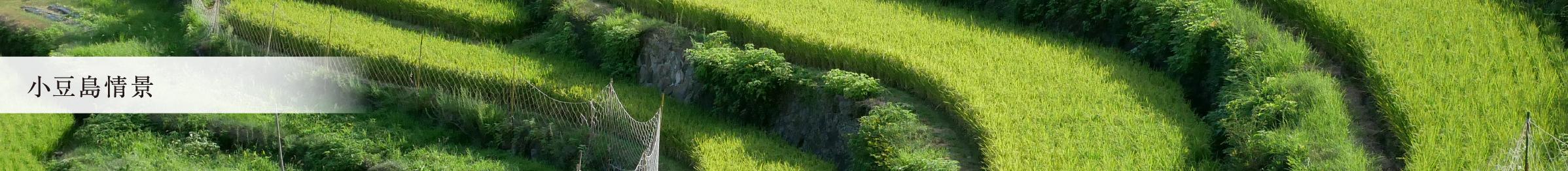 小豆島情景